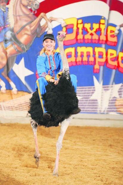 Ride An Ostrich Local Dailyjournalonline Com