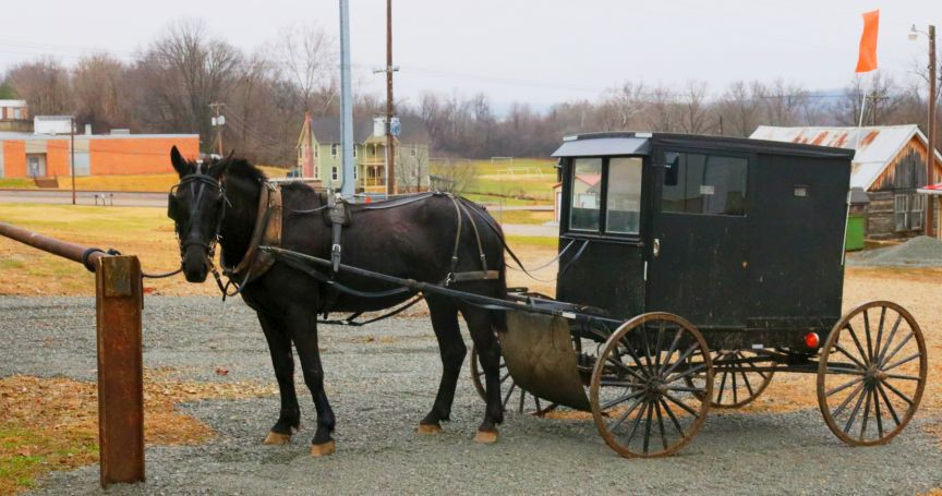 County hitching post in Fredericktown