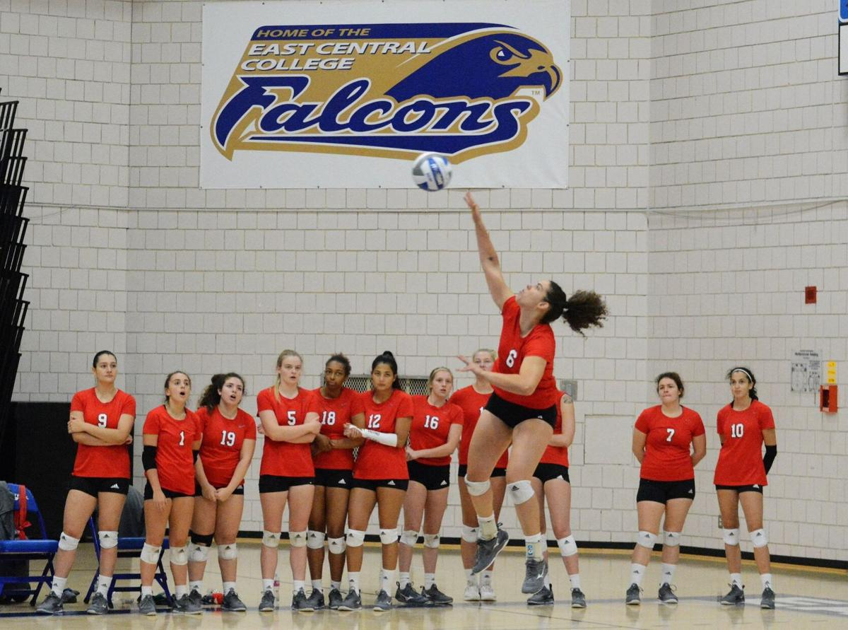 Mineral Area Volleyball