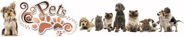 Farmington Pets Header