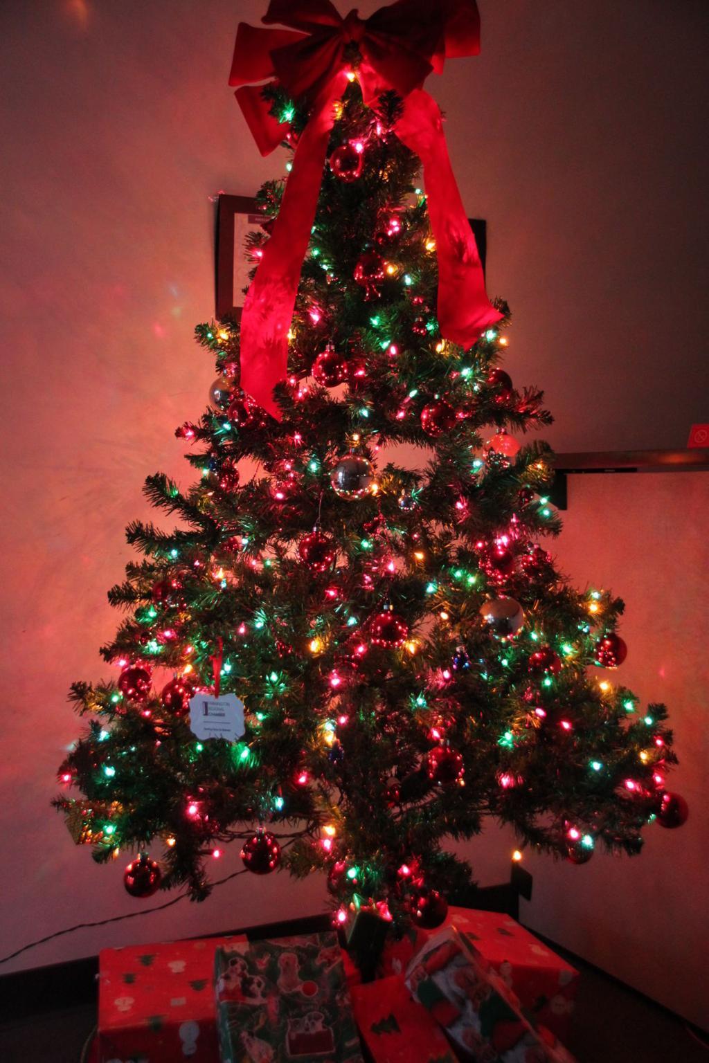 History Of Christmas Tree.History Of Christmas Traditions Daily Journal News