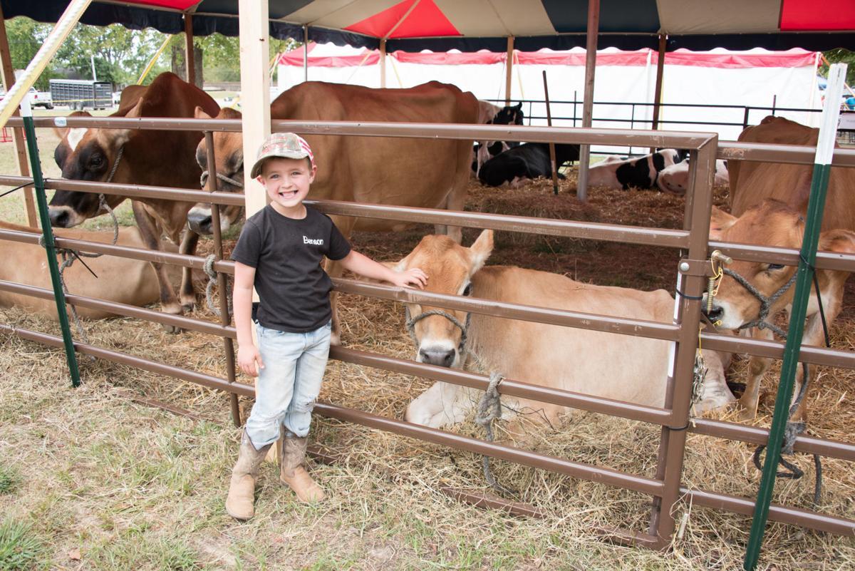 Madison County Fair 2019