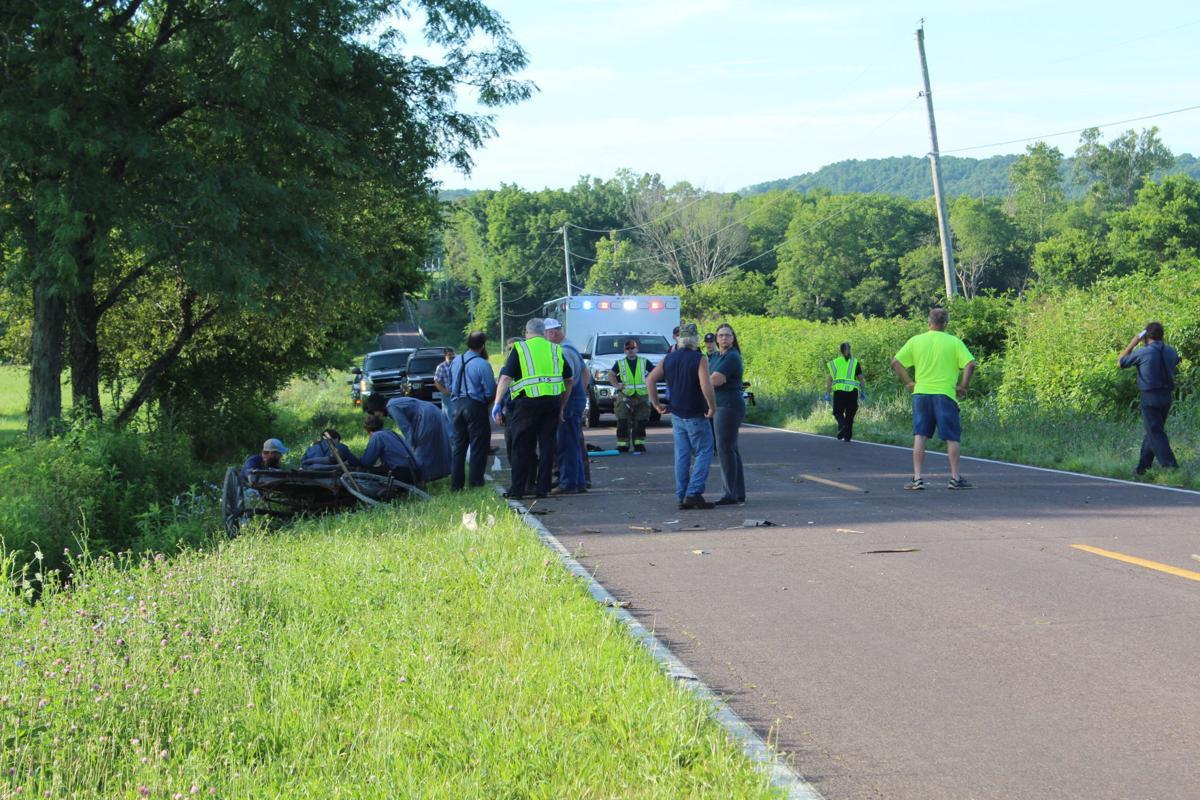Horse-drawn buggy crash