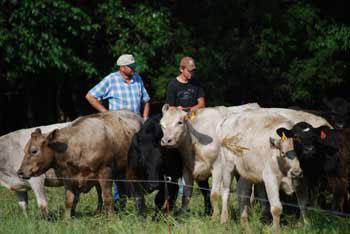 Farm family recognized