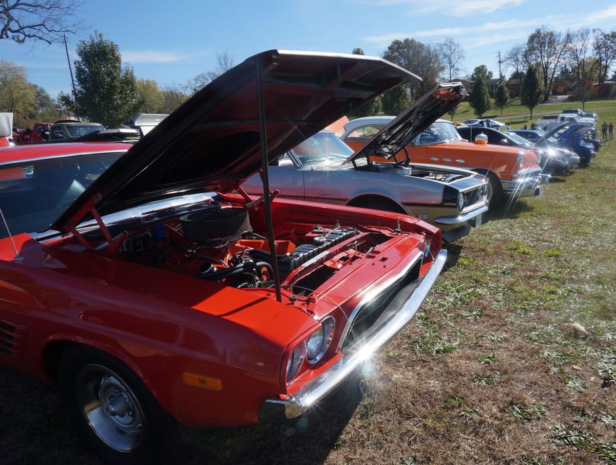 Benefit car show raises money for Greg and Sarah\'s Angels | Daily ...
