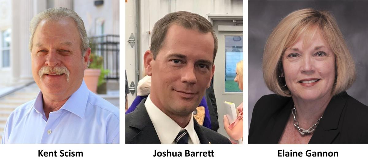 District 3 Senate race sees three on Republican ticket
