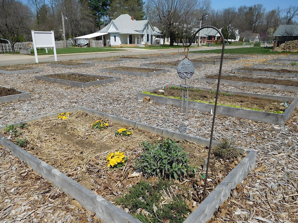 Community garden plants seeds of grow-your-own