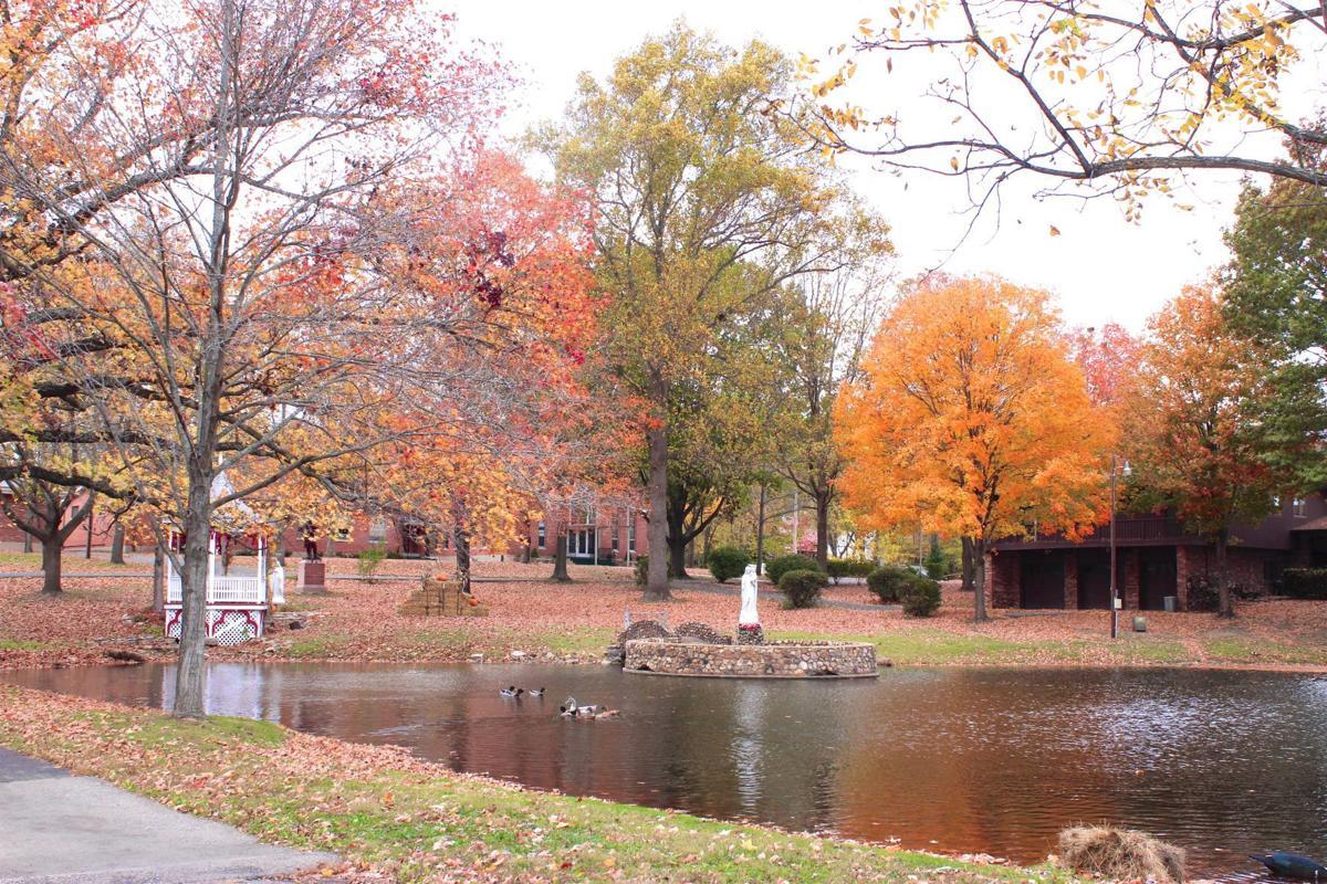 Missouri fall beauty