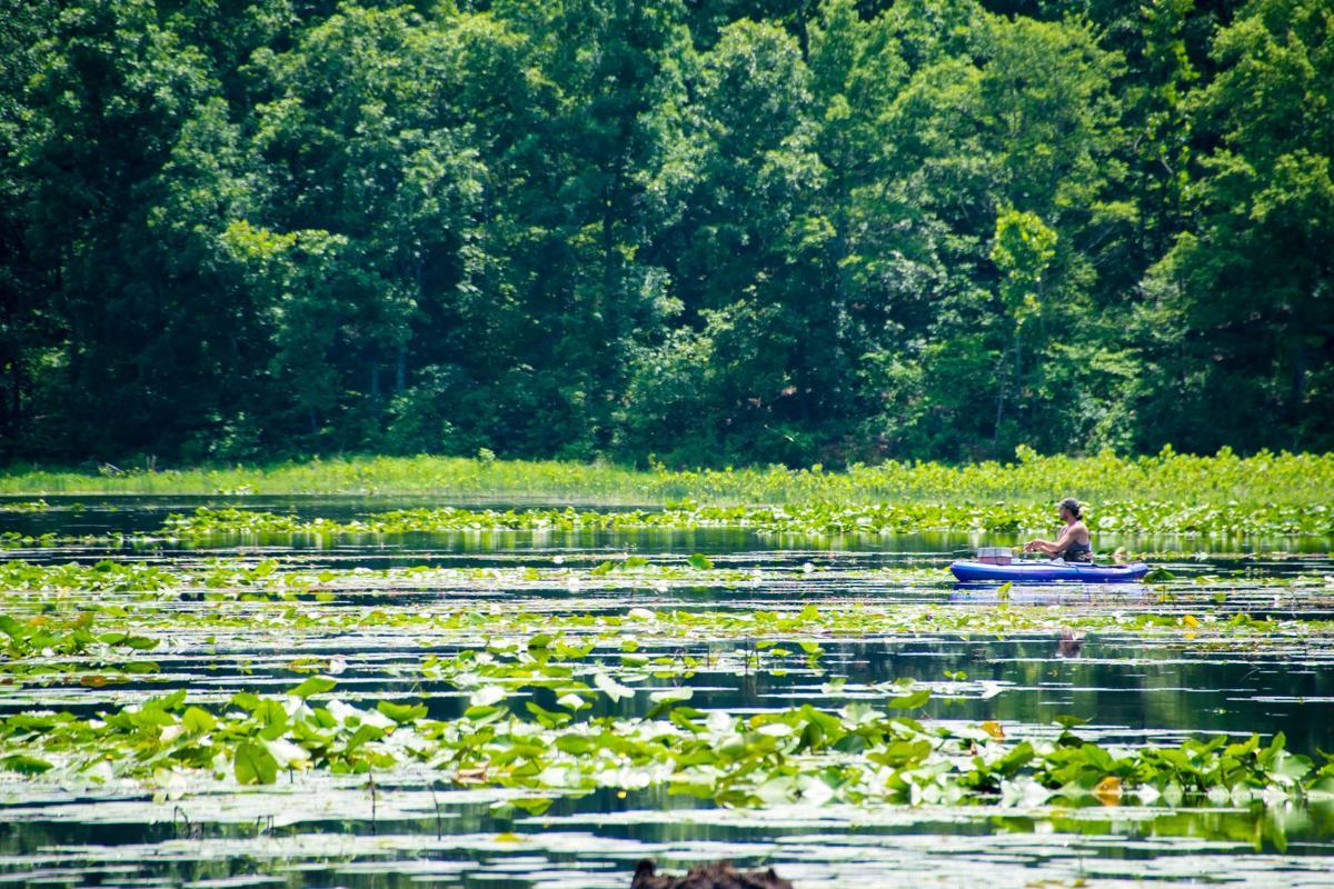 Crane Lake-2.jpg