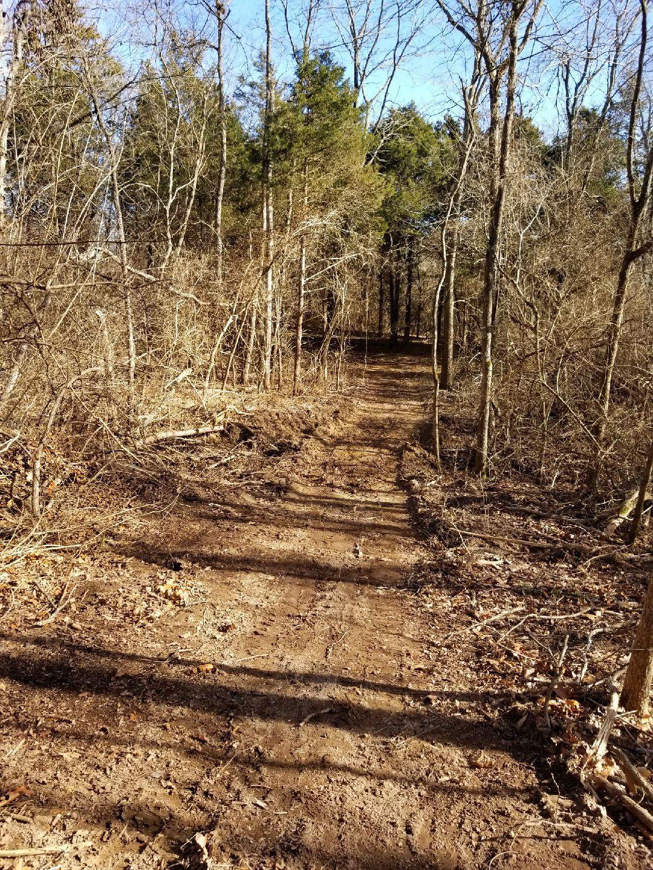 Archery trails