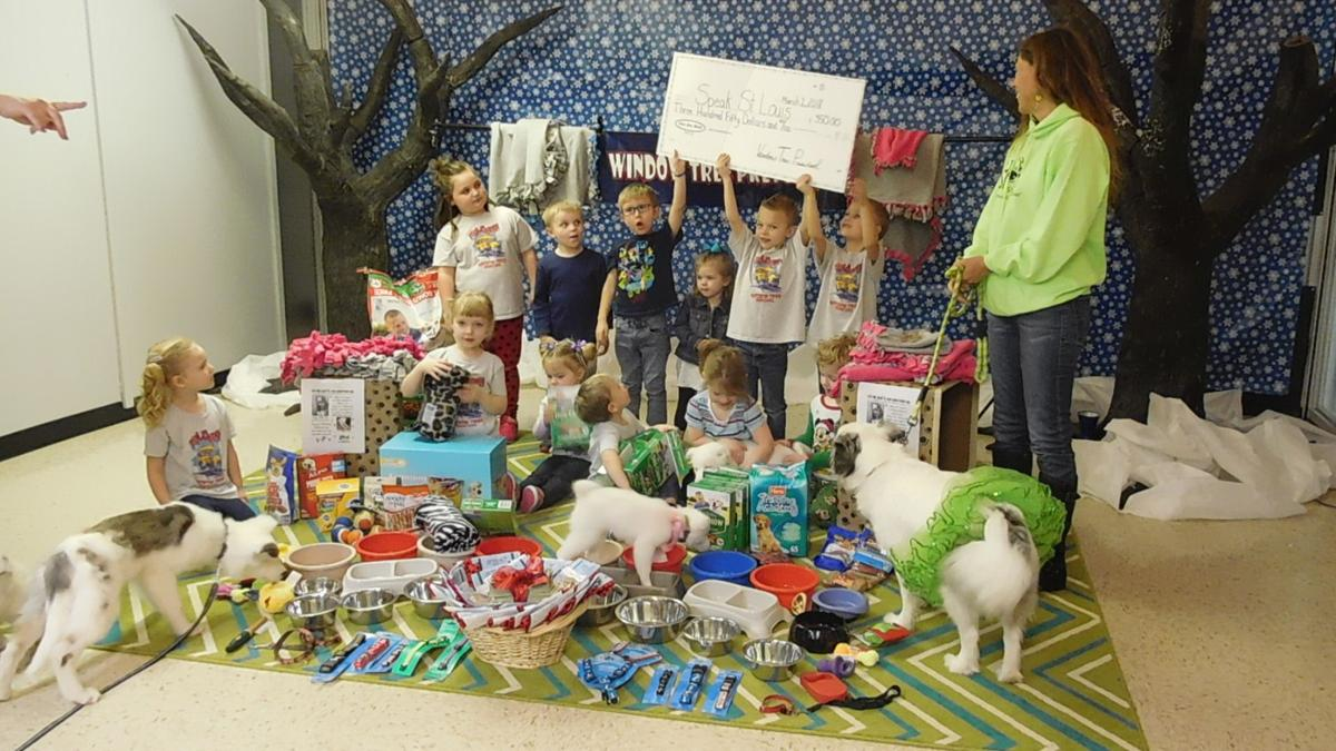 Donation makes difference for shelter