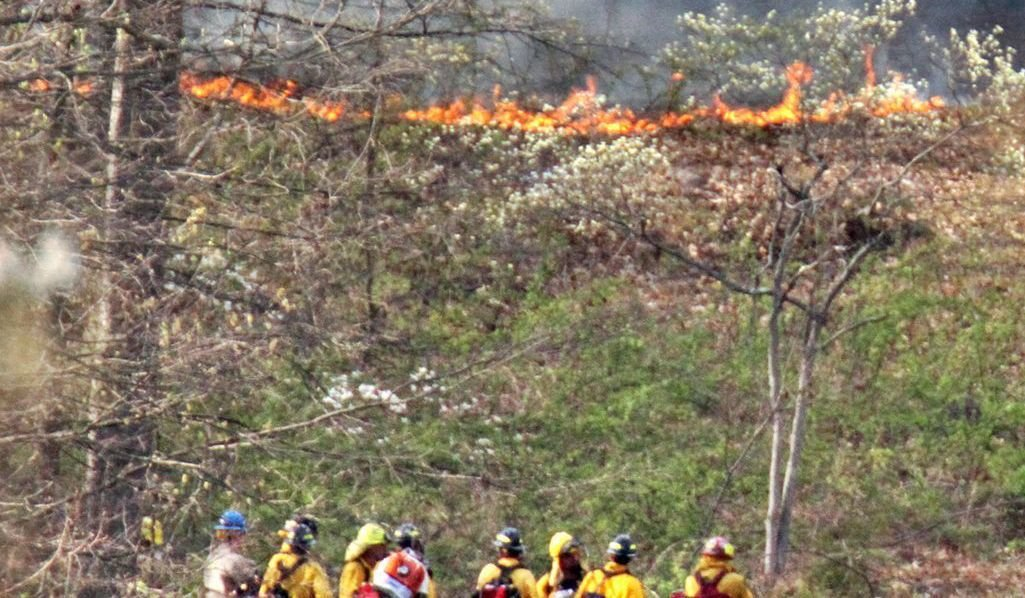 Brush fire contained but still burning