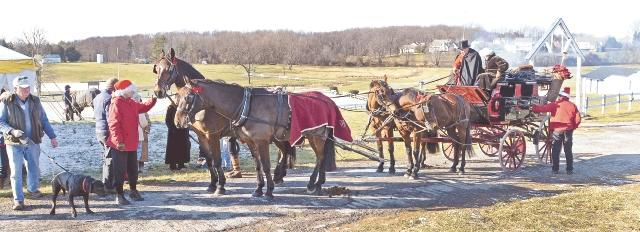 Holiday party for horse lovers at Ludwig's Corner