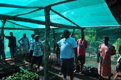 Emae declared Organic Island