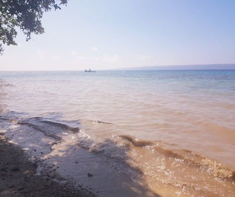 Alleged Oil Spill Cleared By Authorities
