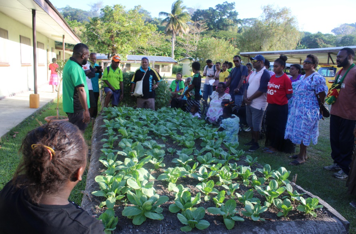 Inclusive Agriculture: First Ever Backyard Garden Training for People with Disability