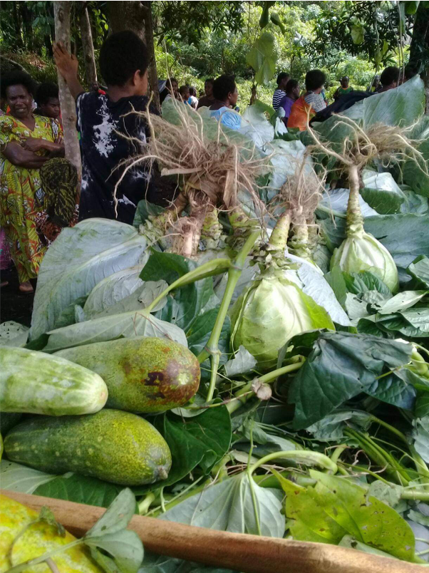 West Ambrym's first Mini Agriculture Show a success