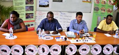 Incursion of rhinoceros beetle into Vanuatu still unclear: Minister Seremiah