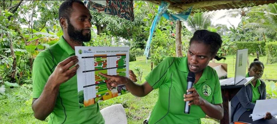 Luganville Backyard Garden Training Targets Food Security