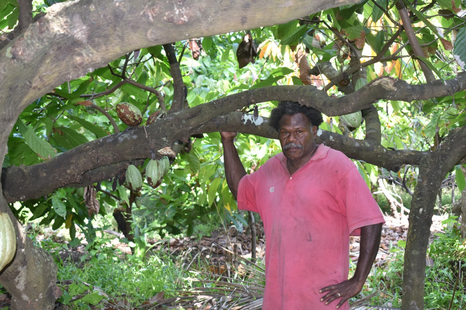 Farmer Produces Cocoa for 30 Years, Exports Direct to Australia