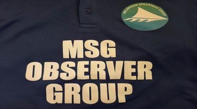 MSG observer election