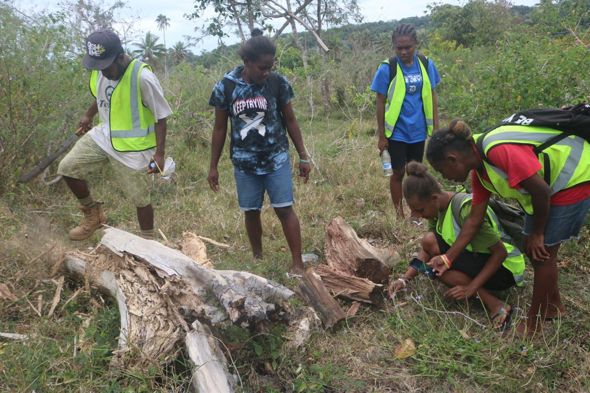 USP Emalus Campus joins fight against Rhino Beetle