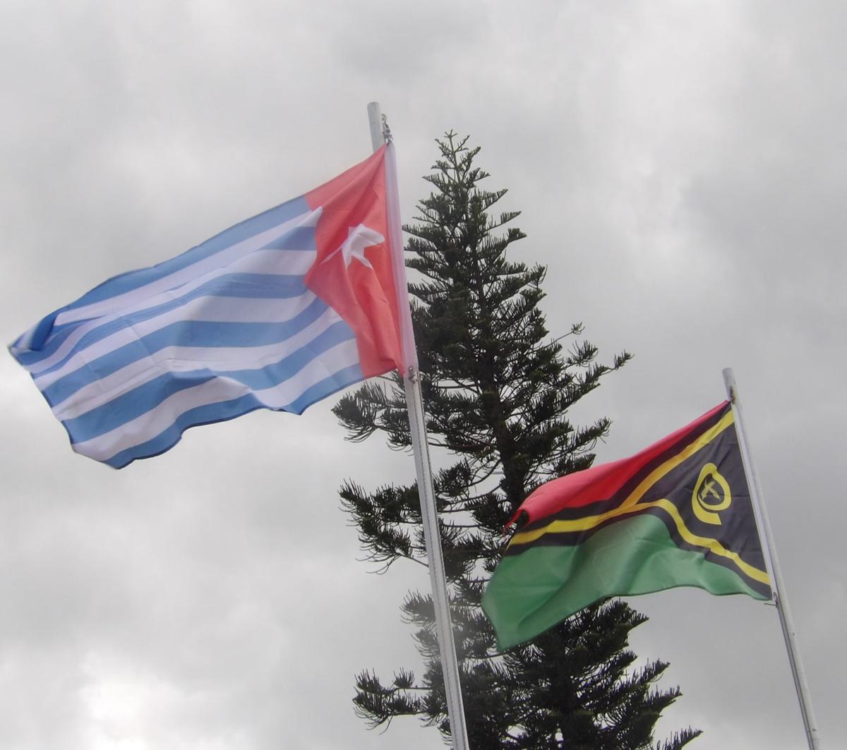 WP Flag flying