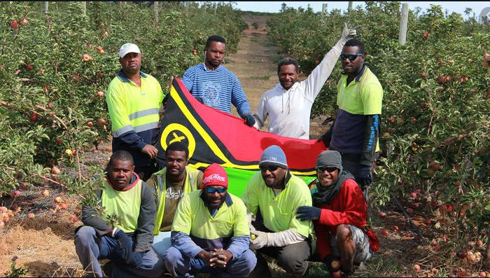 What does COVID-19 mean for Ni-Vanuatu labour mobility programs?