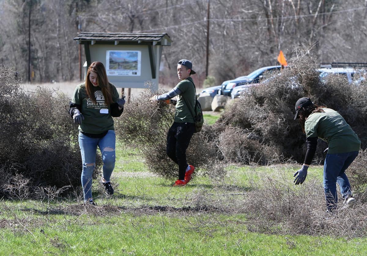 Helen McCabe park cleanup