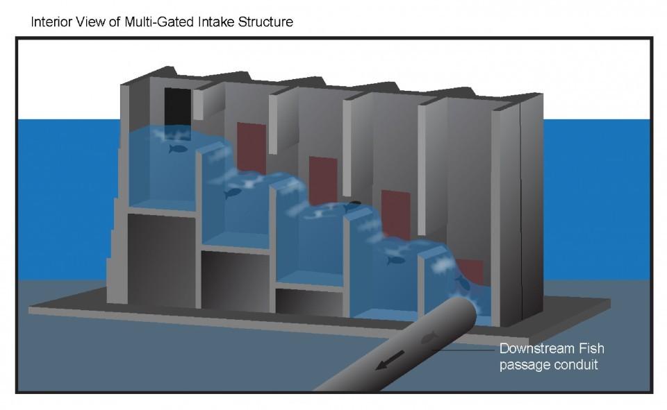 fish ladder diagram cle elum dam project would help salmon reach cle elum ... motor control circuit ladder diagram #14