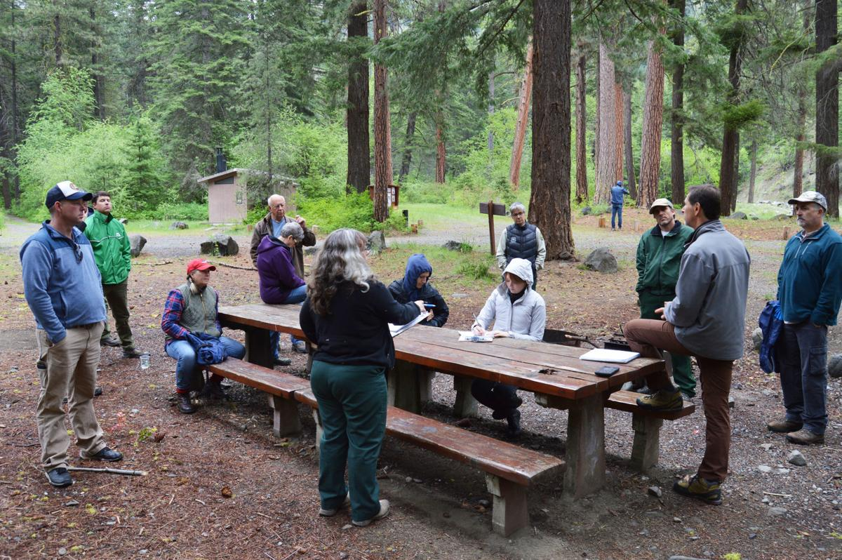 518f22542ea353 US Forest Service plans to work on issues related to forest and aquatic  health, recreational opportunities in Taneum Canyon