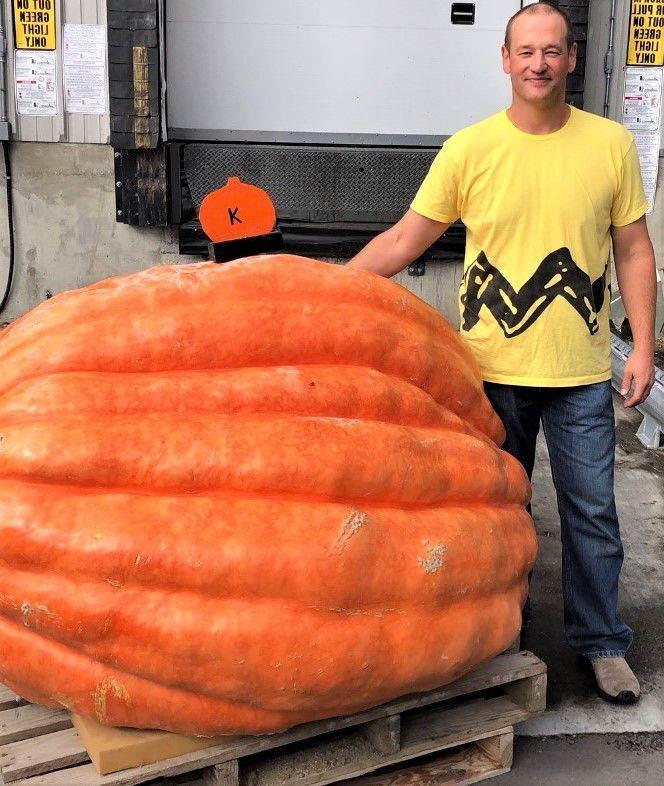 Central Washington University officer grows 894-pound pumpkin