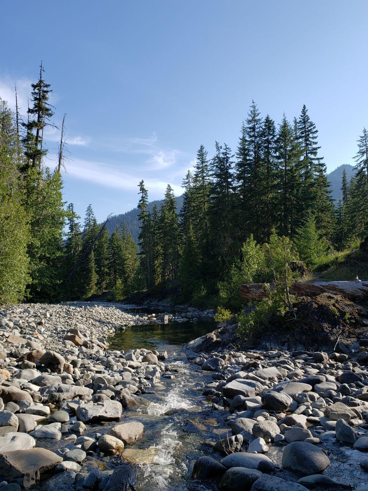 Cle Elum River Snowpack