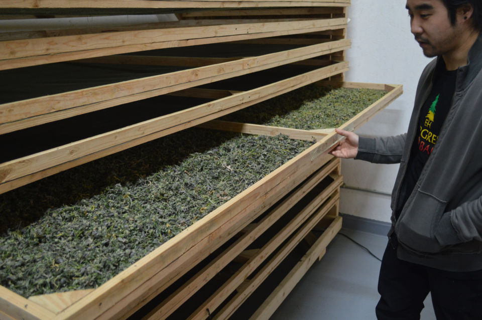 Cannabis Drying Rack Awesome Determining Marijuana's Effect On Local Agriculture Figuring Out