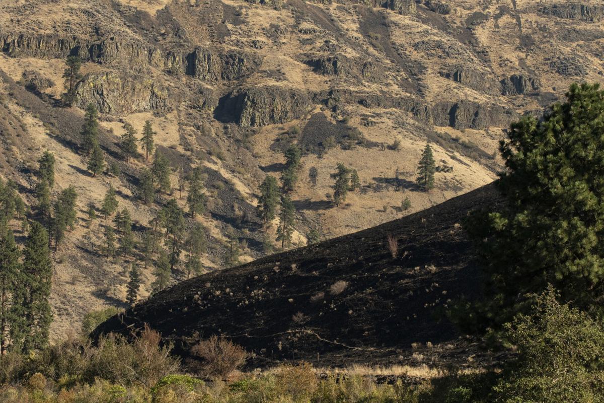 Yakima Canyon River Post Evans Canyon Fire