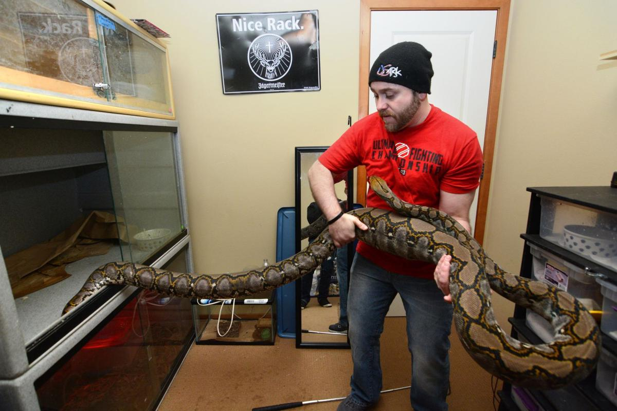 Cle Elum Man Works To Find Homes For Snakes And More
