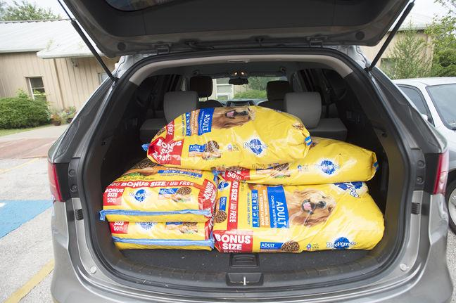 Fifty Pound Bags Of Dog Food Fill The Trunk A Car Outside Nacogdoches Animal Shelter Enough To Supply Dogs In Program For Month