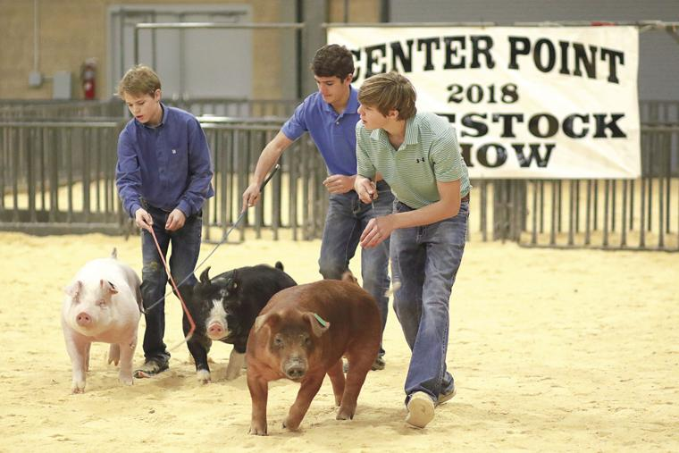 Students showing in the Gilt class