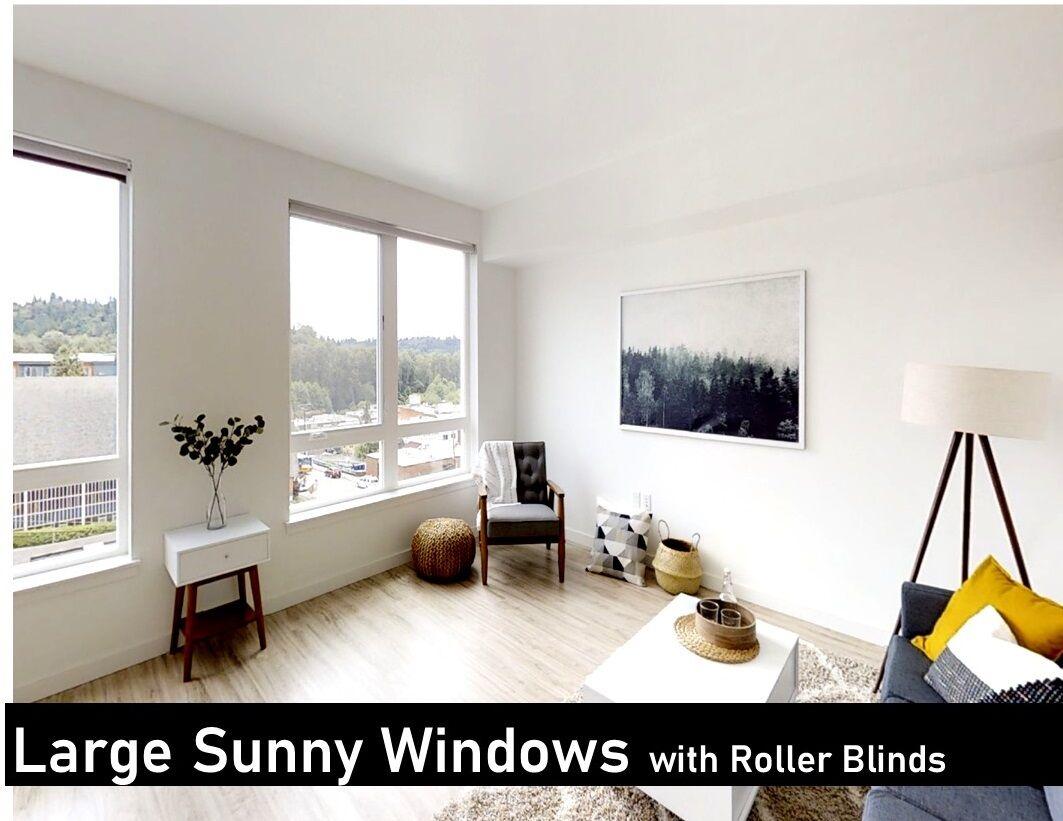 Open Large Window