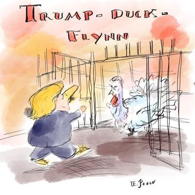 Trump-duck-flynn
