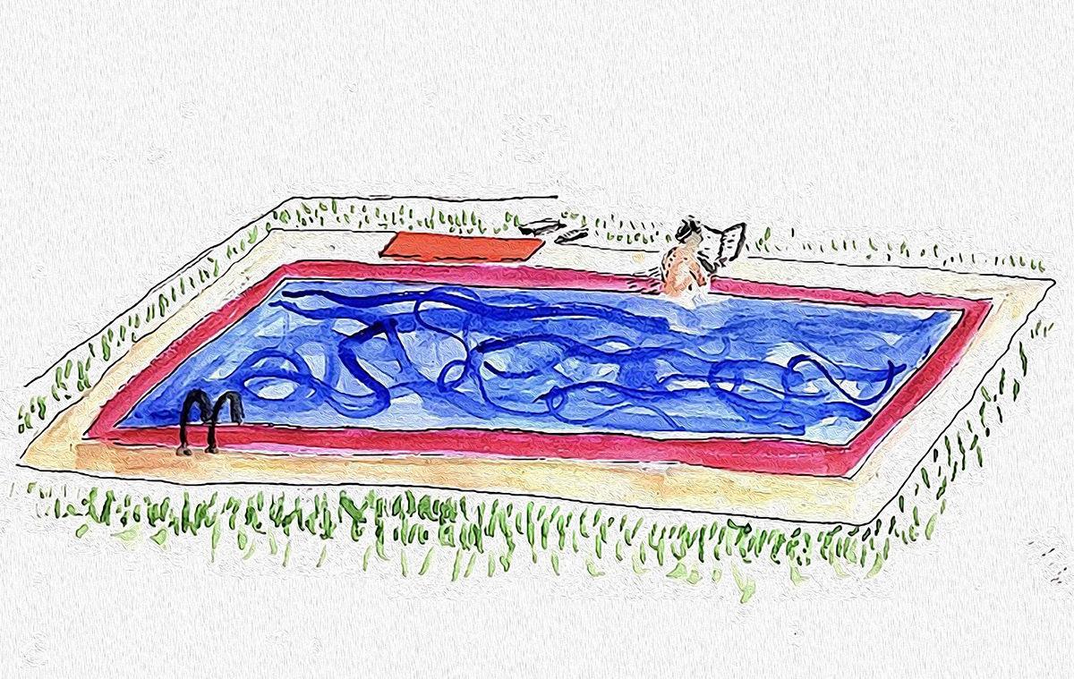 Reading Poolside