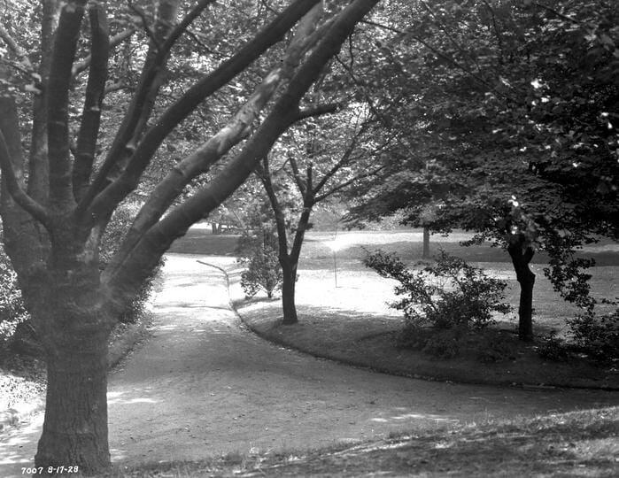 Denny Park
