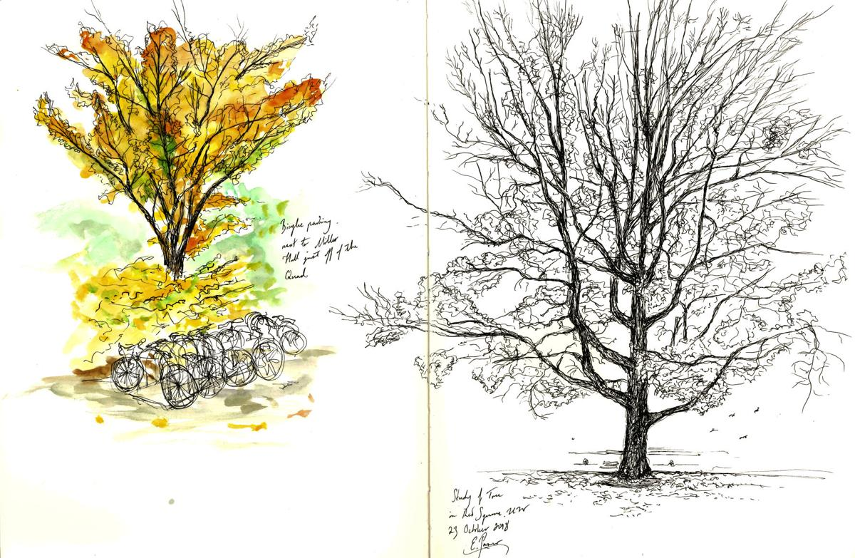 The Campus Sketcher