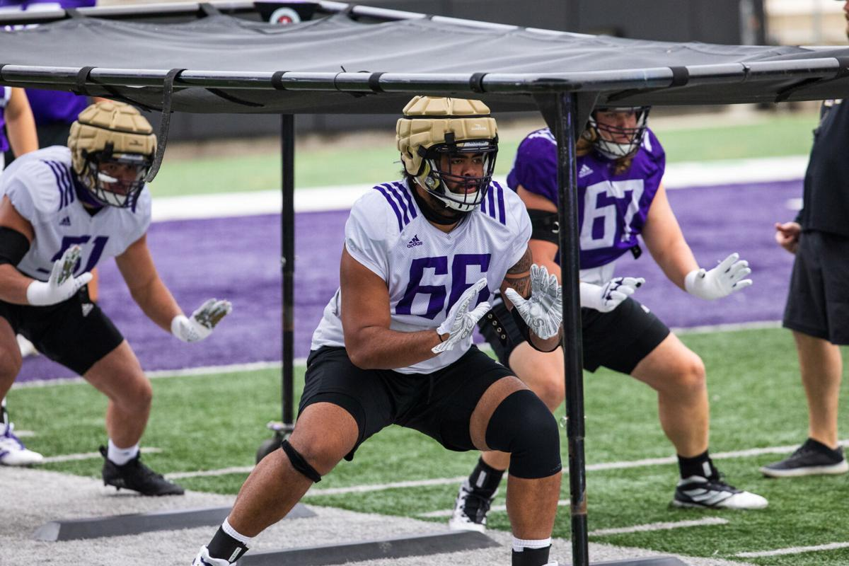 The stable reloaded: UW backfield in good shape with Newton and McGrew