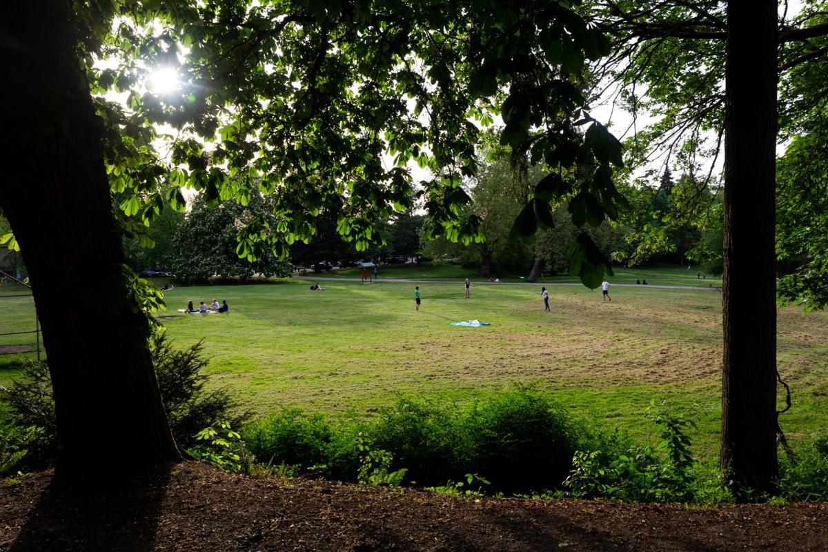 Cowen Park: Seeking local sunshine while social distancing