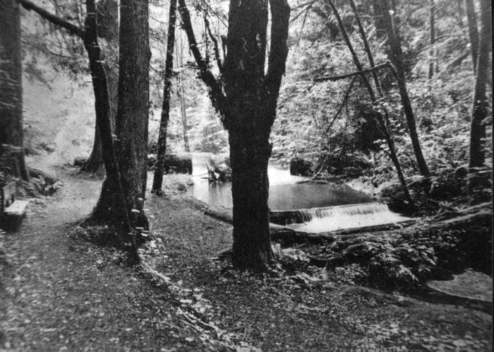 Ravenna 1902
