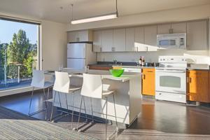 UW Mercer Court Apartments kitchen.jpg