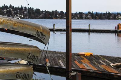 Swimming spots in Seattle