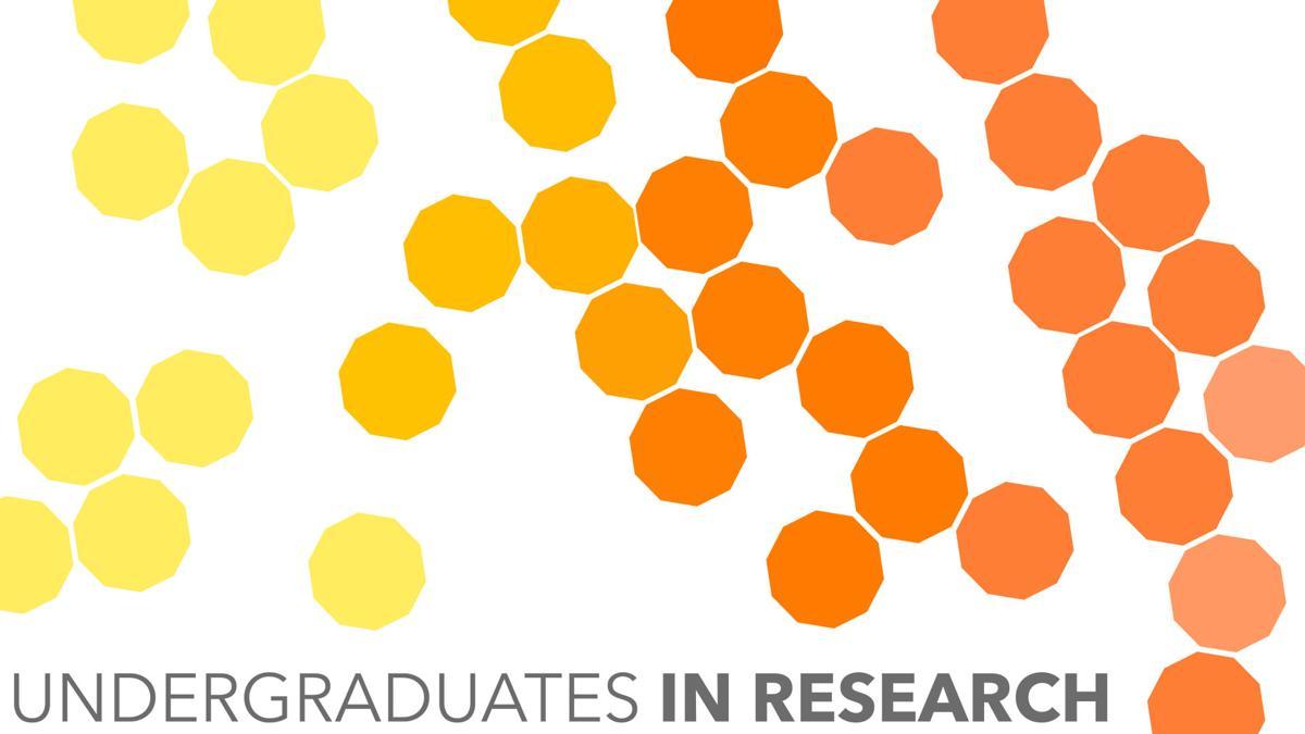 undergrads in research
