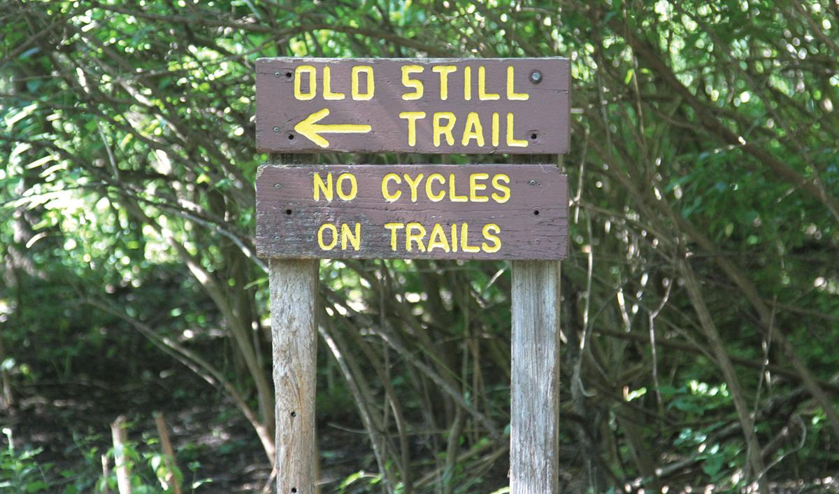 Old Still Trail, Nelson Park